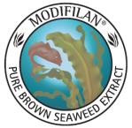 modifilan logo