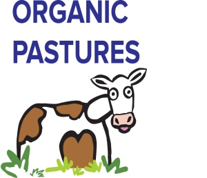 Cow and grass with ORGANIC PASTURES- BRAND 1.28.15